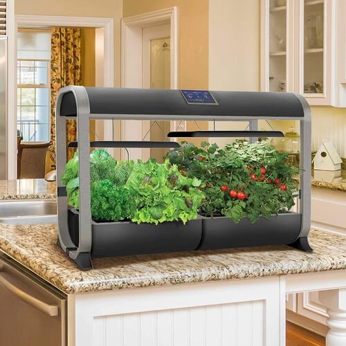 smart garden mini greenhouse