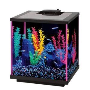 LED Glass Aquarium Kit